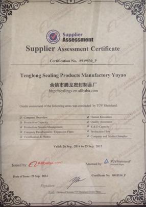 Tenglong-TUV-Certificated
